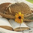 Close up of straw hat, sunglasses and book on a hammock — Stock Photo #72265251