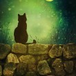 Black cat on rock wall Halloween night — Stockfoto #84641732