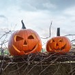 Funny face pumpkins sitting on fence — Stock Photo #84641850