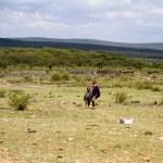 Kenyan masai kids — Stock Photo #61758151