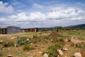 Kenyan masai village — Stock Photo