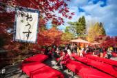 Eikando,Kyoto — Stockfoto
