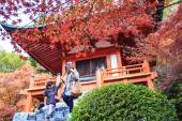 Daigo-ji — Zdjęcie stockowe