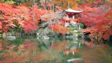 Daigo-ji is a Shingon Buddhist temple in Fushimi-ku — Stock Video