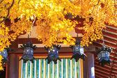 Tanzan Shrine at fall — Stok fotoğraf