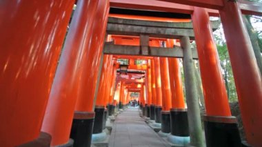 Fushimi inari-taisha-schrein in kyoto, japan — Stockvideo