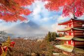 日本の秋の色と富士山. — ストック写真