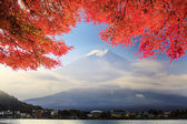 Fuji Mountaion with nice maple — Foto Stock