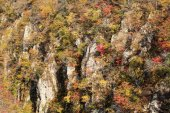Autumn Colors of Naruko-Gorge in Japan — Stock Photo