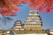 Himeji castle during cherry blossom time — Stock Photo