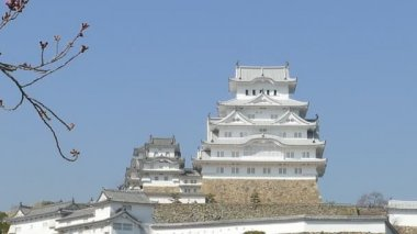 Himeji, Japan - March 28, 2015: himeji castle during cherry blossom time — Stock Video