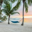 Hammock on tropical beach — Stock Photo #52141569