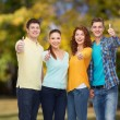 Group of smiling teenagers over green park — Stock Photo #52231473