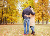 Couple hugging in autumn park from back — Stockfoto