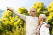 Senior koppel knuffelen in park — Stockfoto