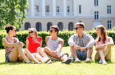 Group of smiling friends outdoors sitting on grass — Stock fotografie