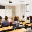 Group of students in lecture hall — Stock Photo #55200679