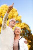 äldre par kramas i park — Stockfoto