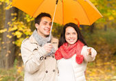 Smiling couple with umbrella in autumn park — Stock Photo