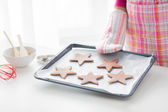 Close up of woman with cookies on oven tray — Foto de Stock