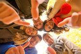 Grupo de sorrir homens e mulheres no parque outono — Fotografia Stock