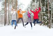 Group of smiling men and women in winter forest — Stock Photo