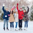 Happy friends ice skating on rink outdoors — Stock Photo #63097875