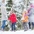Group of happy friends playing snowballs in forest — Stock Photo #63098641