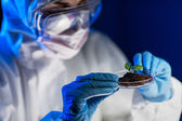 Close up of scientist with plant and soil in lab — Stock Photo