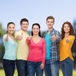 Group of smiling teenagers over green park — Stock Photo #63594253