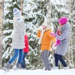Group of happy friends playing snowballs in forest — Stock Photo #64079805