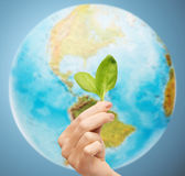 Woman hand with green sprout over earth globe — Stock Photo