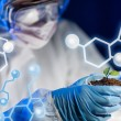 Close up of scientist with plant and soil in lab — Stock Photo #66322767