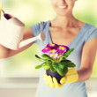 Woman holding pot with flower — Stock Photo #66813431