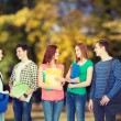 Group of smiling students standing — Stock Photo #67231279