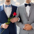 Close up of happy male gay couple holding hands — Stock Photo #67993691
