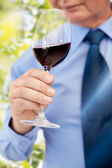 Close up of senior man drinking wine from glass — Stock Photo