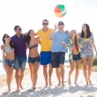 Group of happy friends walking along beach — Stock Photo #68959687