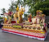 Chiang Mai Flower Festival at Suan Buak Hat Park — Stock Photo