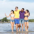 Group of happy friends walking along beach — Stock Photo #70916829