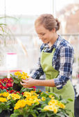 Happy woman holding flowers in greenhouse — Stock Photo
