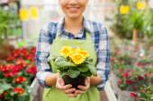 Close up of woman holding flowers in greenhouse — Stock Photo