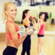 Young sporty woman with heavy steel dumbbell — Stock Photo #72675833