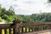 View from balcony to tropical woods at hotel — Stock Photo