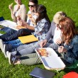 Group of teenage students eating pizza on grass — Stock Photo #74319413