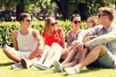 Group of smiling friends outdoors sitting on grass — Stock Photo