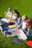 Group of teenage students eating pizza on grass — Stock Photo
