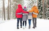 Group of happy men and women in winter forest — Stock Photo