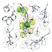 Ink drawn grapes — Stock Vector