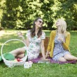 Two cheerful girlfriends enjoying the spare time in park — Stock Photo #55242837